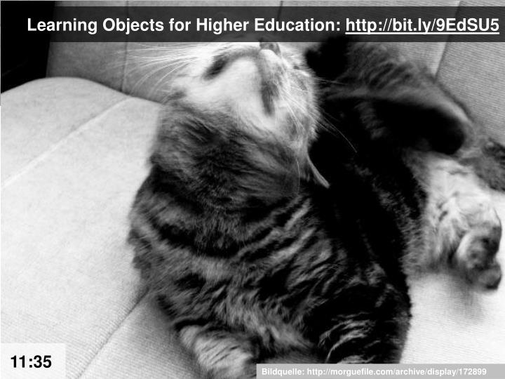Learning Objects for Higher Education: