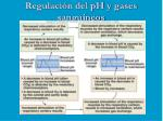 regulaci n del ph y gases sanguineos