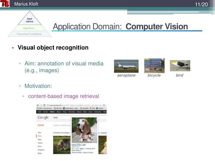Application Domain: