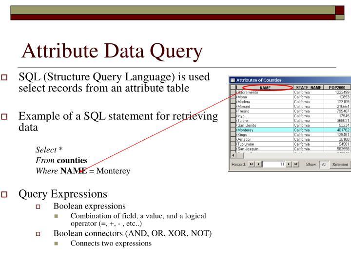 Attribute data query