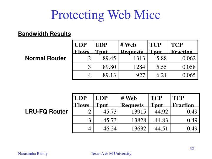 UDP Flows