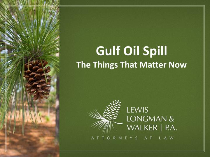 gulf oil spill the things that matter now n.