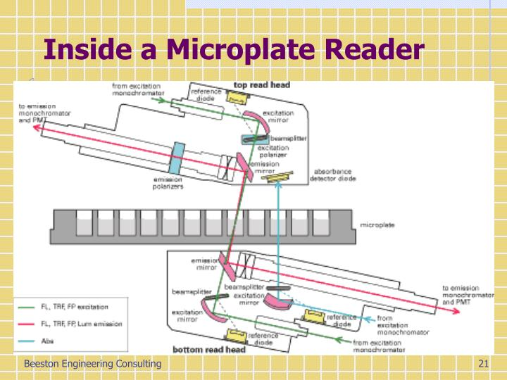 Inside a Microplate Reader