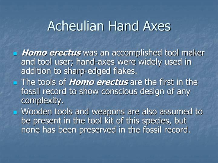 Acheulian Hand Axes