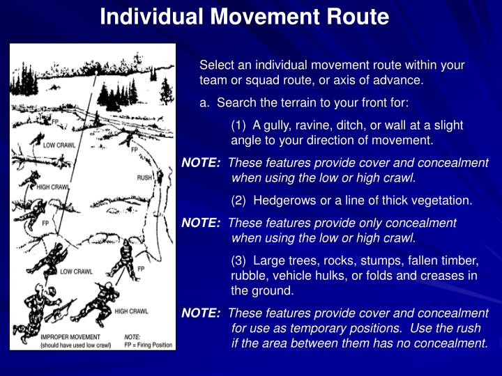Individual Movement Route