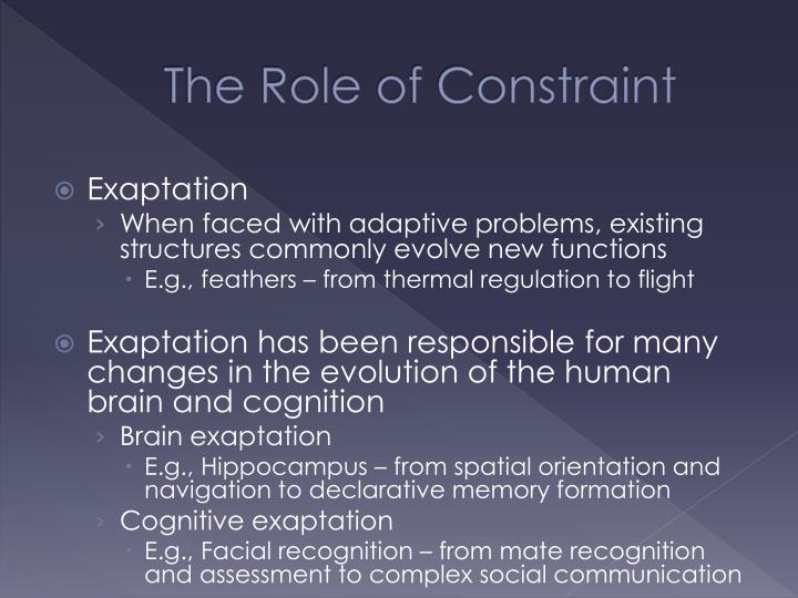 The Role of Constraint