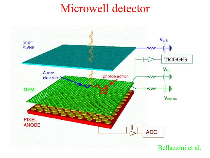 Microwell detector