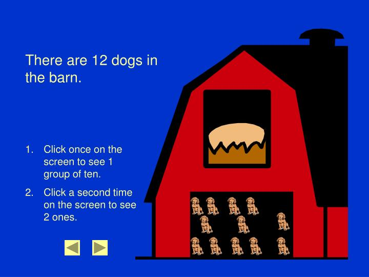 There are 12 dogs in the barn.