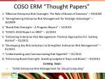coso erm thought papers