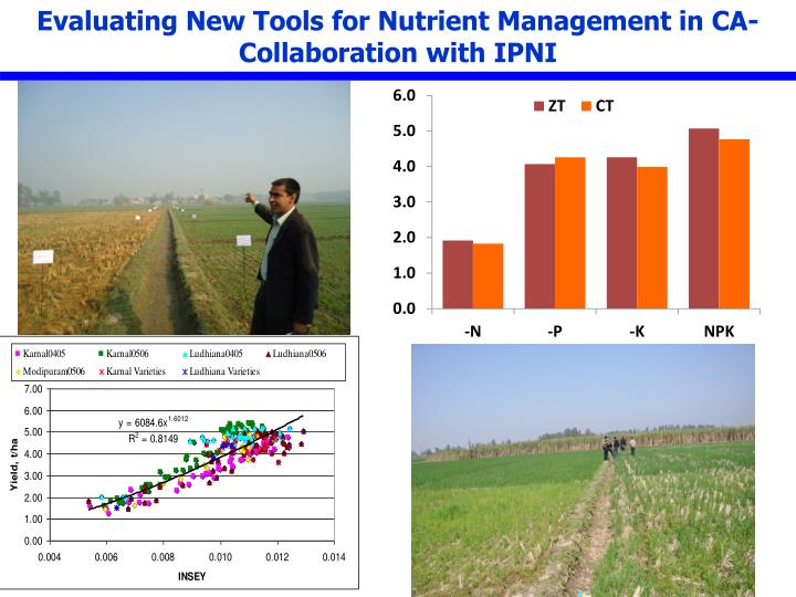Evaluating New Tools for Nutrient Management in