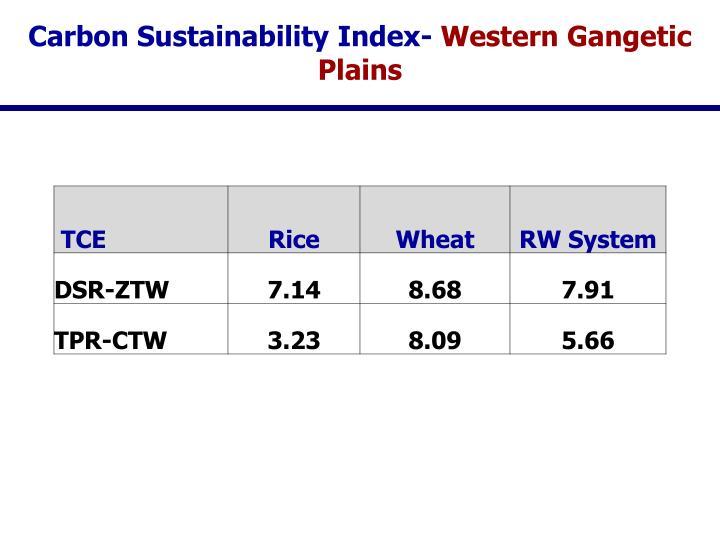 Carbon Sustainability Index-