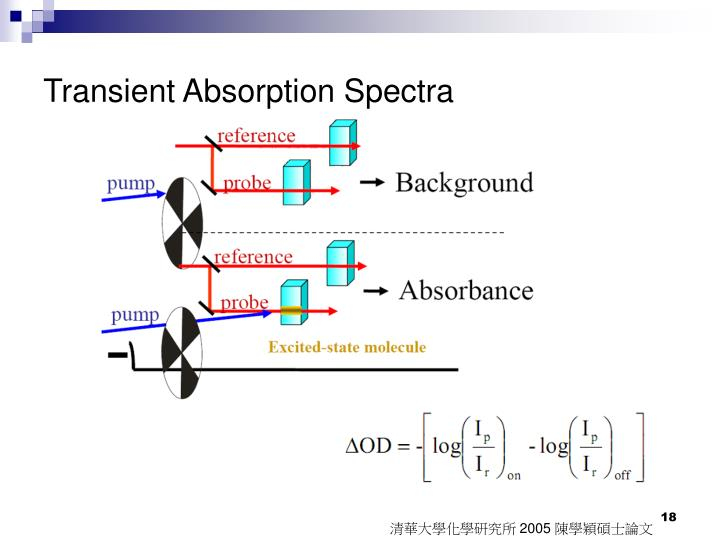 Transient Absorption Spectra