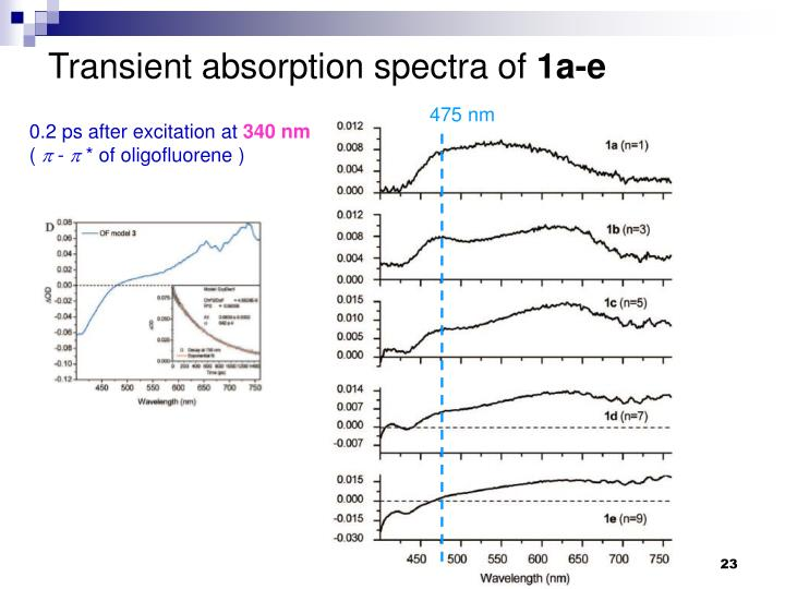 Transient absorption spectra of