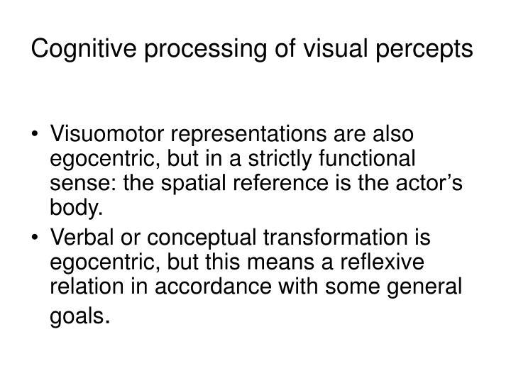 Cognitive processing of visual percept