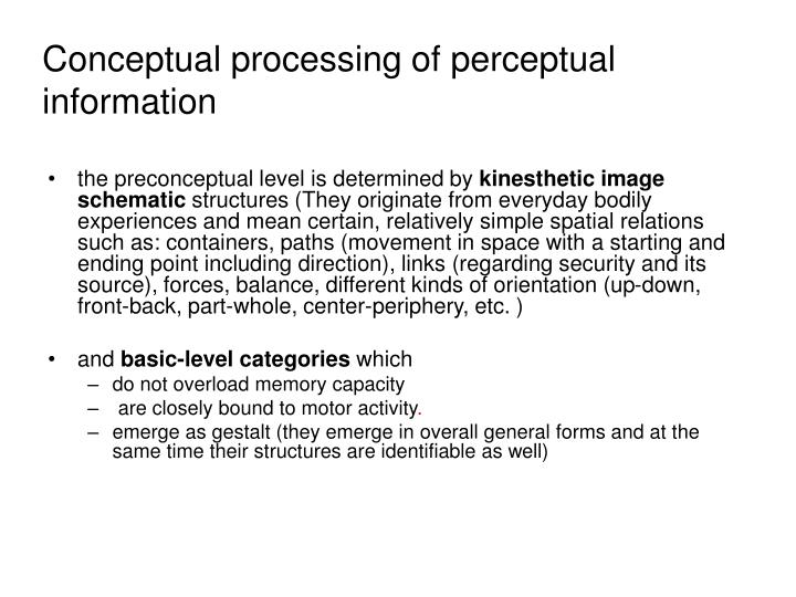 Conceptual processing of perceptual information