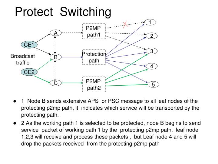 Protect  Switching