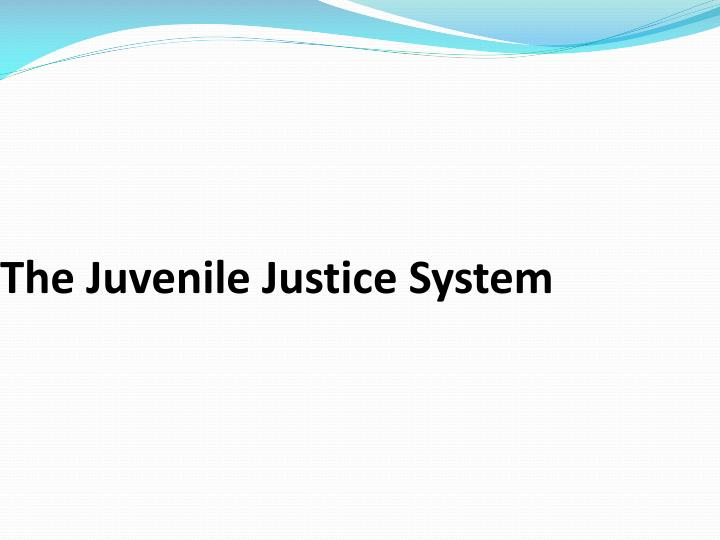 the juvenile justice system n.