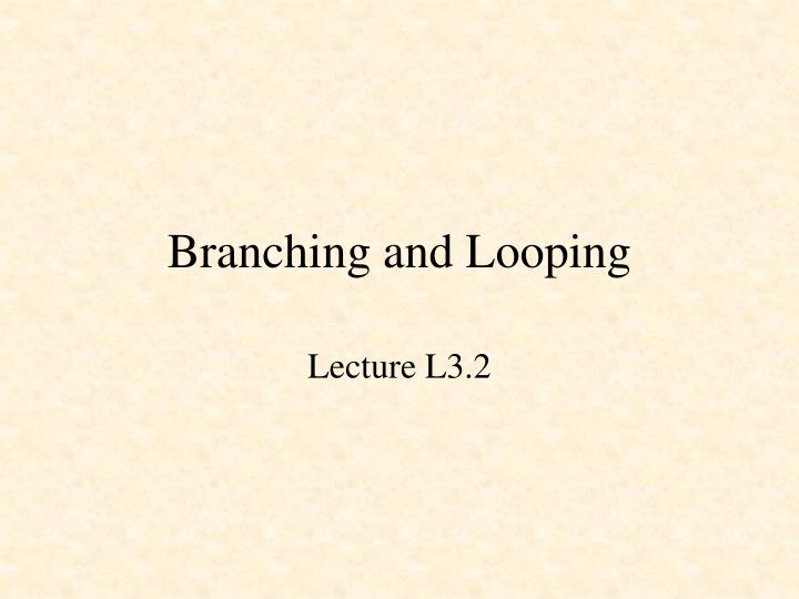 branching and looping n.