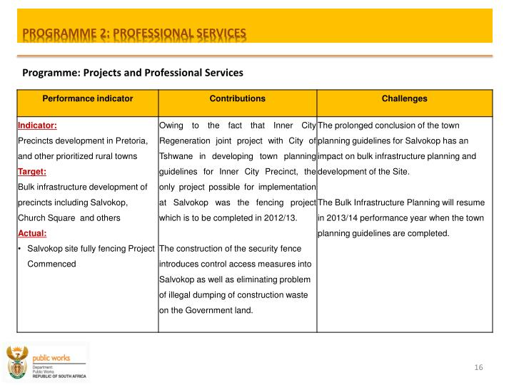 PROGRAMME 2: PROFESSIONAL SERVICES
