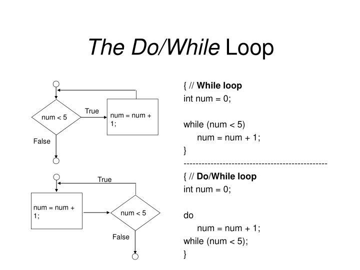 The Do/While