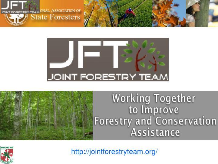 http://jointforestryteam.org/
