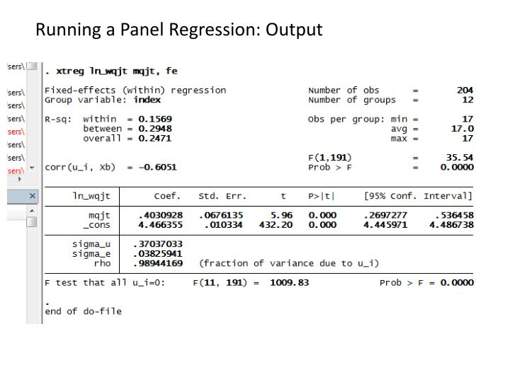 Running a Panel Regression: Output