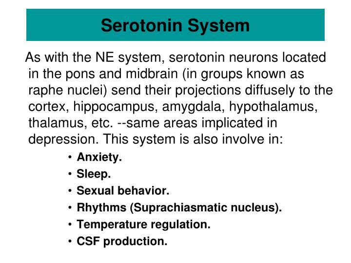 Serotonin System