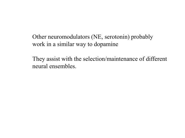 Other neuromodulators (NE, serotonin) probably