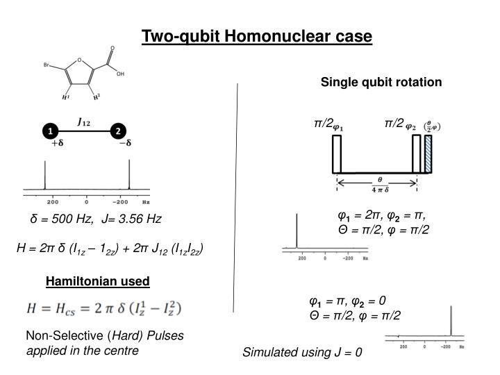 Two-qubit Homonuclear case