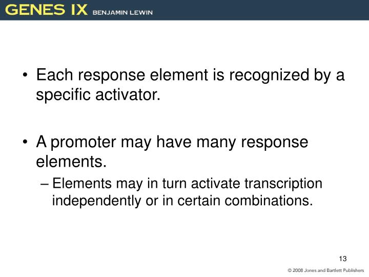 Each response element is recognized by a specific activator.