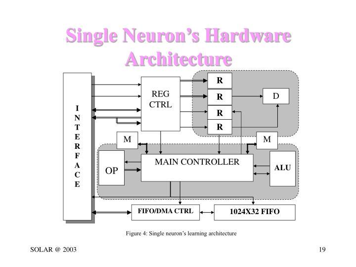 Single Neuron's Hardware Architecture