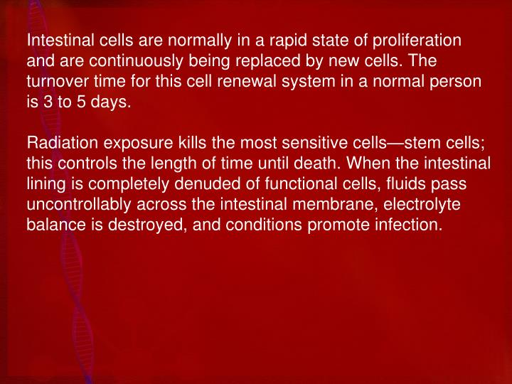 Intestinal cells are normally in a rapid state of proliferation and are continuously being replaced by new cells. The turnover time for this cell renewal system in a normal person is 3 to 5 days.