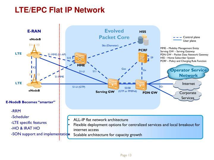 LTE/EPC Flat IP Network