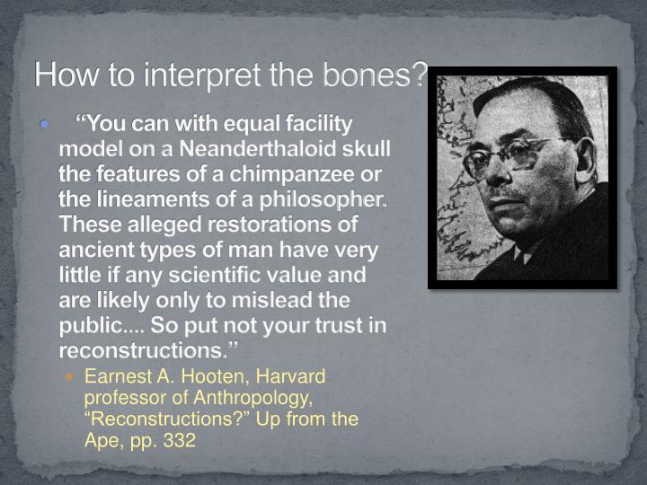 How to interpret the bones