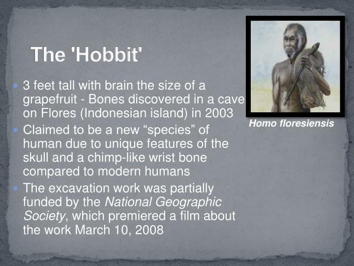 The 'Hobbit'