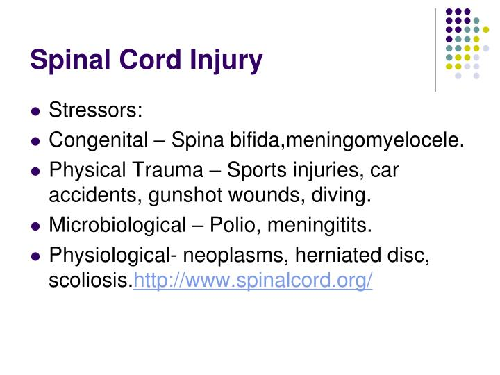 Spinal cord injury1