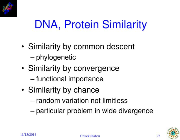 DNA, Protein Similarity
