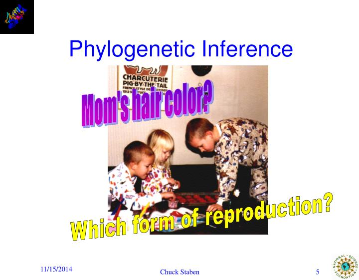 Phylogenetic Inference