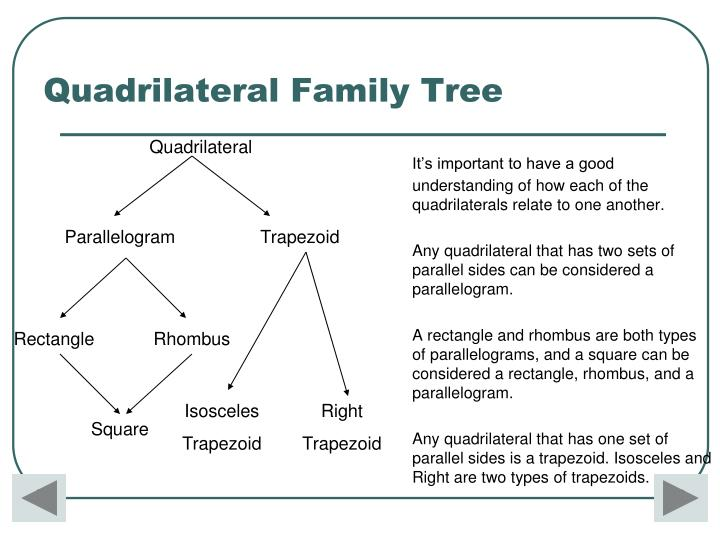 It's important to have a good understanding of how each of the quadrilaterals relate to one another.