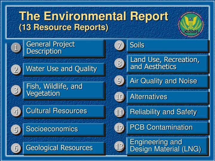 The Environmental Report