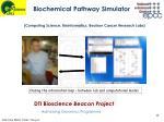biochemical pathway simulator
