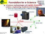 foundation for e science