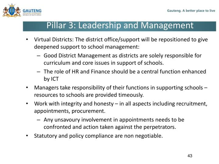 Pillar 3: Leadership and Management