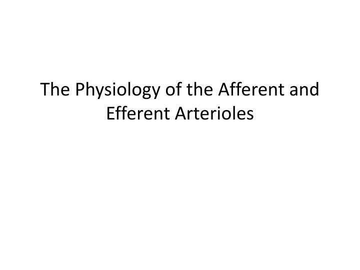 PPT - The Physiology of the Afferent and Efferent Arterioles ...