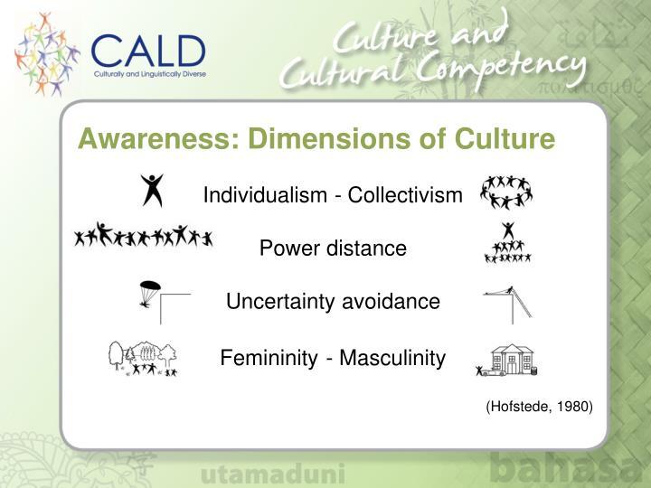 Awareness: Dimensions of Culture