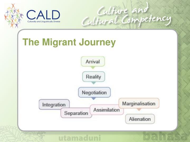 The Migrant Journey