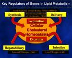 key regulators of genes in lipid metabolism