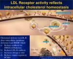 ldl receptor activity reflects intracellular cholesterol homeostasis