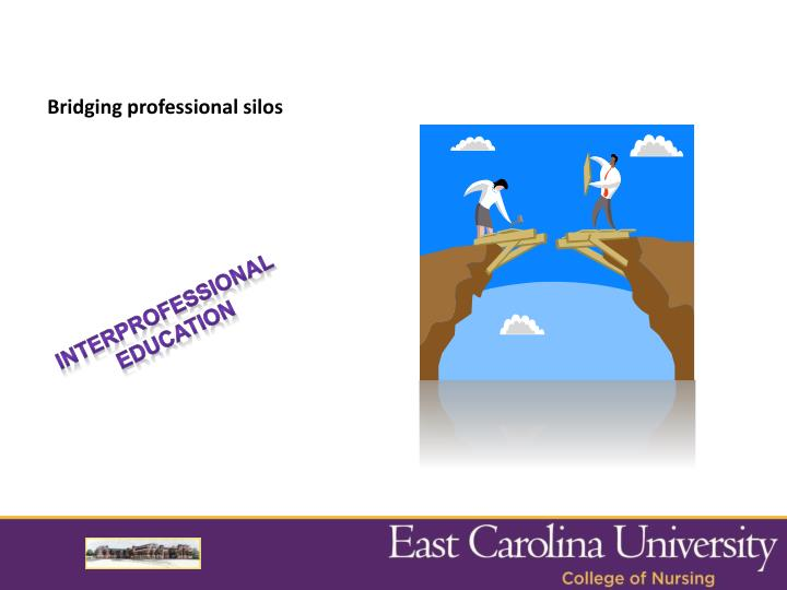 Bridging professional silos