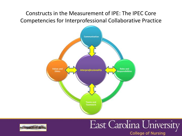 Constructs in the Measurement of IPE: The IPEC Core Competencies for Interprofessional Collaborative Practice
